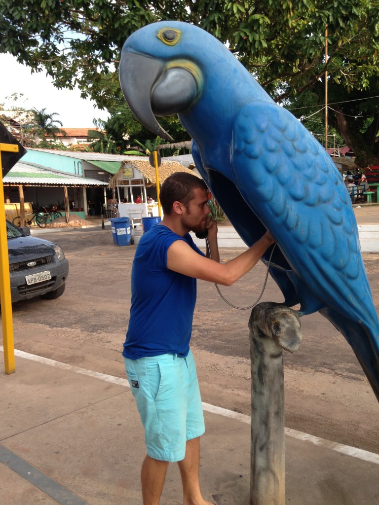 You mean you guys don't make phone calls from parrots?